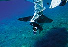 Подводни криле за извънбордов двигател