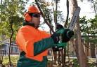 Електрически и  бензинови инструменти и машини на Hitachi за работа в градината. Част I
