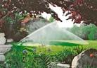 Създаване и поддържане на тревни площи